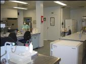 Imagem de laboratório P3, no INSA-Porto